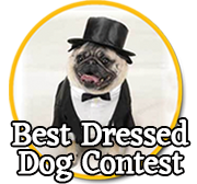 Best Dressed Dog Contest
